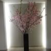 桜の観葉植物(六本木ヒルズレジデンス)