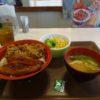 朝活!すき家でうなぎ&牛丼を食べてみた~スタミナ付きます!!