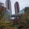 紅葉の六本木ヒルズ(さくら坂、けやき坂、毛利庭園)
