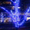 東京ミッドタウンの冬のイルミネーション♪何度見ても素敵ですね☆☆