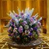 アジサイって簡単に育てられるの?紫陽花という名の起源と歴史、花言葉を分かりやすく解説☆庭に植えると縁起が悪いって本当?