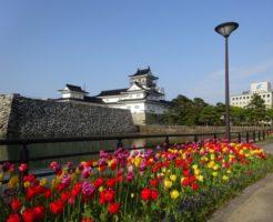 富山旅行記